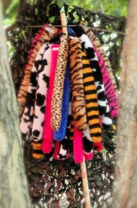 Festival Tails! Photo: courtesy Festival Tails' Flickr stream