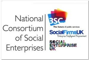 Social enterprise consortium aims to be _go-to provider_ for service delivery contracts | Third Sector